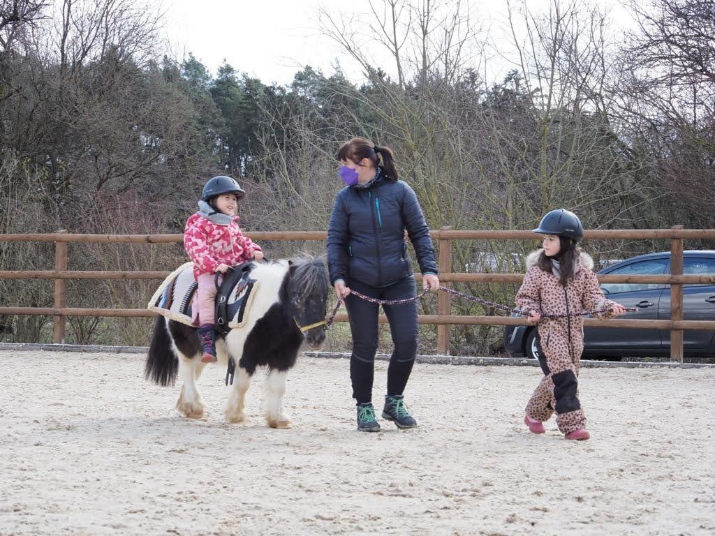 Seit wenigen Wochen gehören die beiden Mini-Pferde Paul und Fritz zum Team der vierbeinigen Therapeuten des Reittherapiezentrums der Lebenshilfe im Nürnberger Land in Lauf-Schönberg.