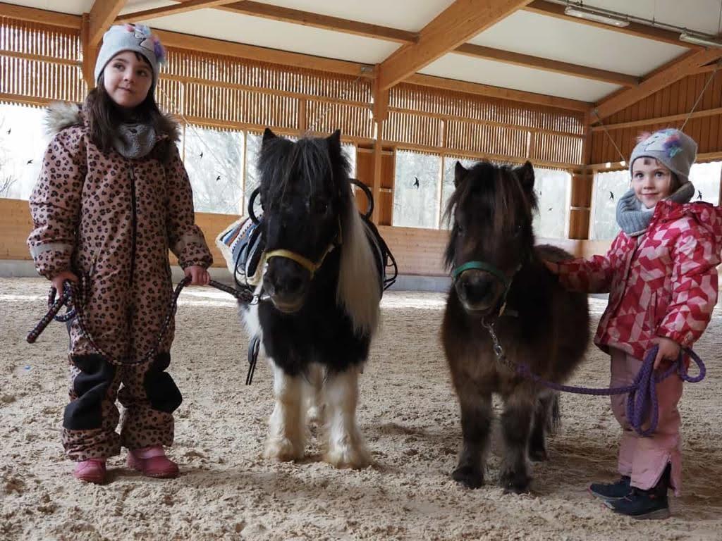 Die Ponys haben die Herzen der Frühförderkinder im Nu erobert. Beste Voraussetzung für eine erfolgreiche Frühförderung.