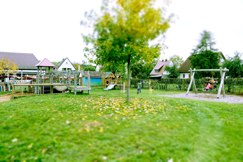 Baumspende der Gemeinde Neunkirchen sorgt für wunderbaren Schatten im Garten der Kita Rollhofen.