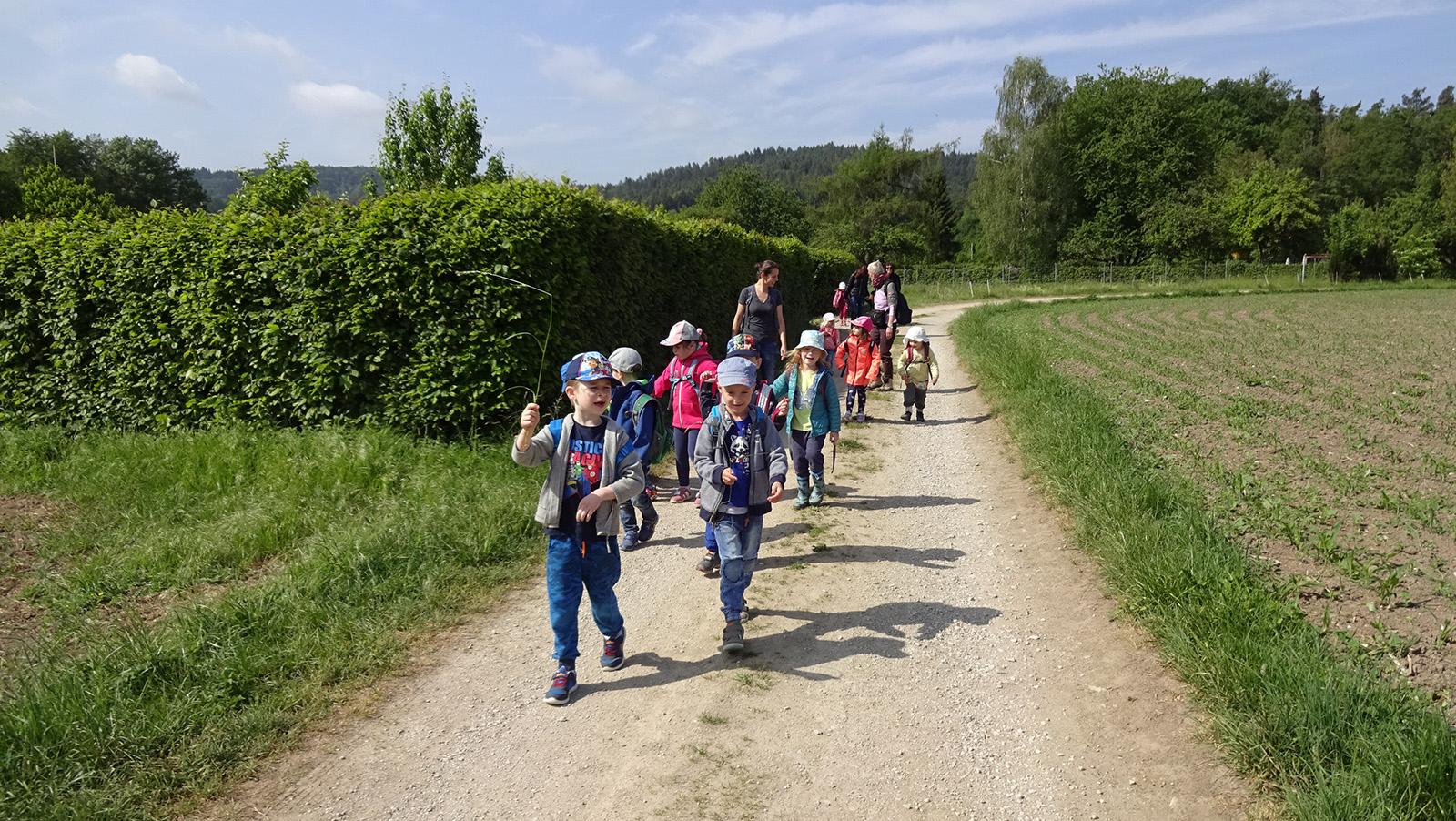 """Bild """"Wandertag"""" zeigt die Kinder der Mäuse-, Bären- und Löwengruppe auf ihrem erlebnisreichen Wandertag."""